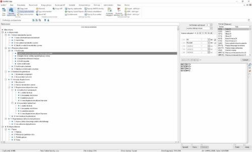 Okno definiowania raportów użytkownika - bilans aktywa